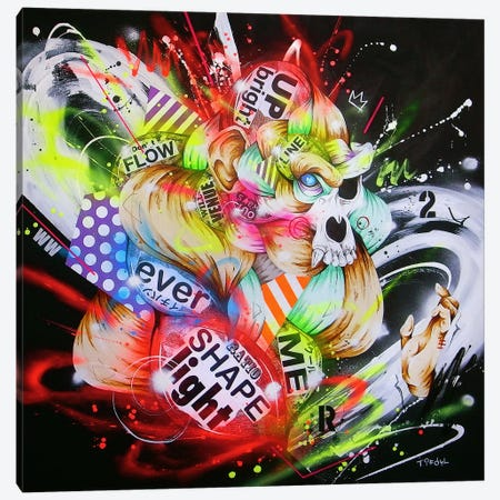 Metamorphose Canvas Print #TSO1} by Taka Sudo Art Print