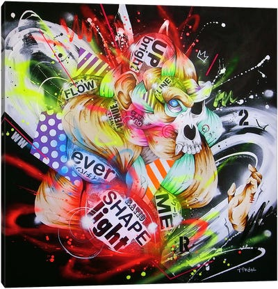 Metamorphose Canvas Art Print