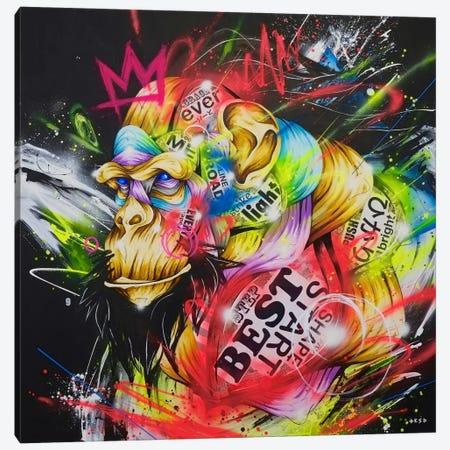 Samurai Canvas Print #TSO25} by Taka Sudo Canvas Wall Art