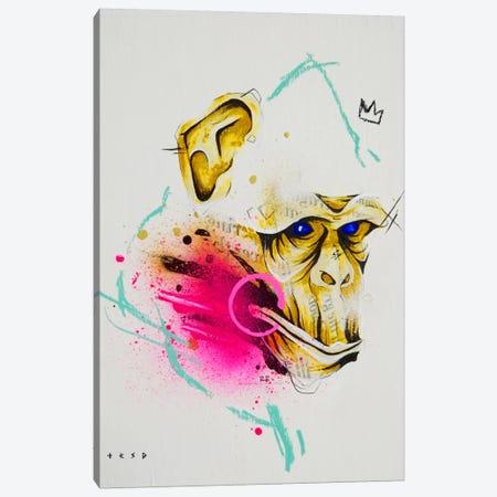 Saru Canvas Print #TSO26} by Taka Sudo Canvas Wall Art