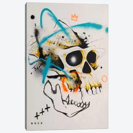 Untitled II Canvas Print #TSO28} by Taka Sudo Canvas Print