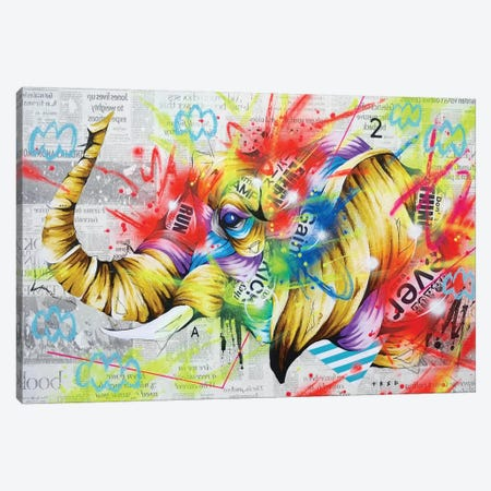 Headspring Canvas Print #TSO41} by Taka Sudo Canvas Art Print