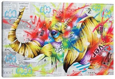 Headspring Canvas Art Print