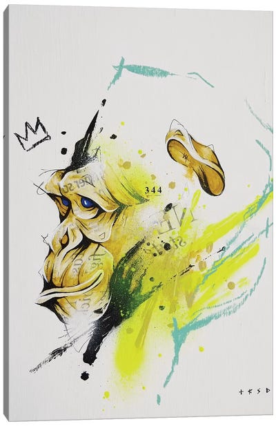 Saru Canvas Art Print