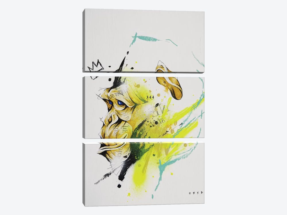 Saru by Taka Sudo 3-piece Canvas Art Print
