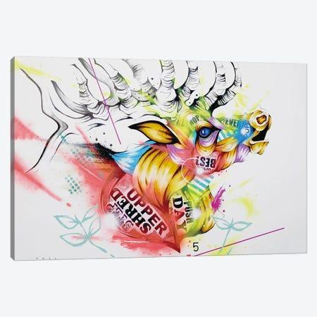 Bush Canvas Print #TSO50} by Taka Sudo Canvas Wall Art