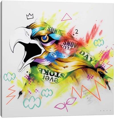 Talon Canvas Art Print