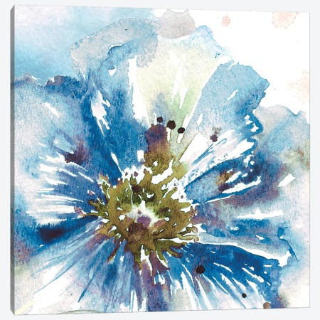 Blue Watercolor Poppy Close Up I Canvas Print #TSS124} by Tre Sorelle Studios Art Print