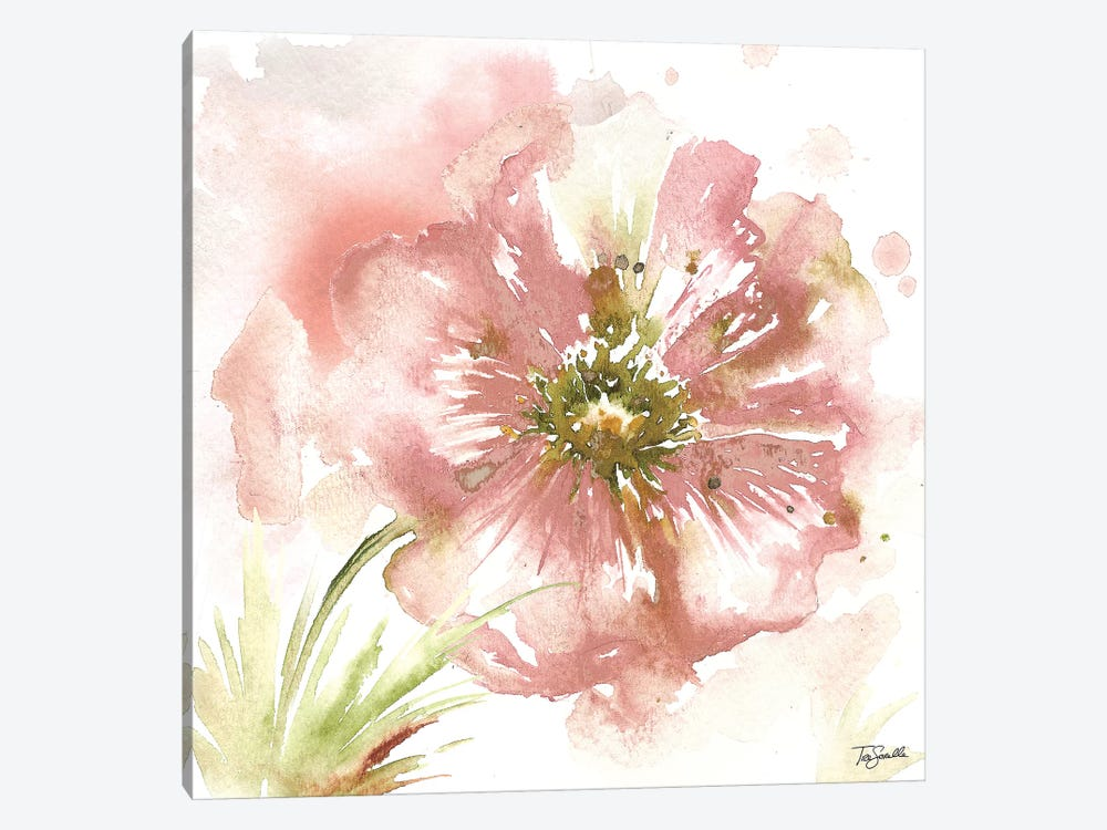 Blush Watercolor Poppy I by Tre Sorelle Studios 1-piece Canvas Artwork