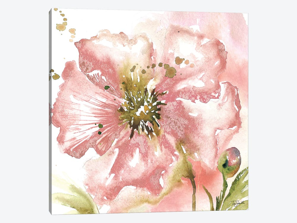 Blush Watercolor Poppy II by Tre Sorelle Studios 1-piece Canvas Print