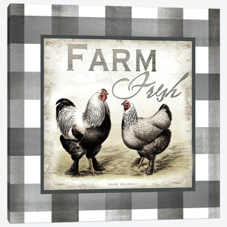 Buffalo Check Farm House Chickens Neutral II Canvas Print #TSS132} by Tre Sorelle Studios Canvas Art Print