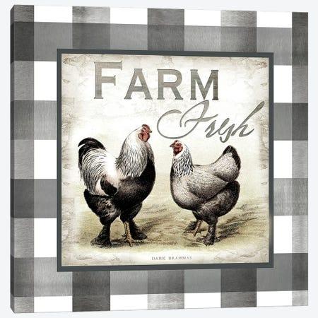 Buffalo Check Farm House Chickens Neutral II Canvas Print #TSS132} by Tre Sorelle Studios Canvas Art Print