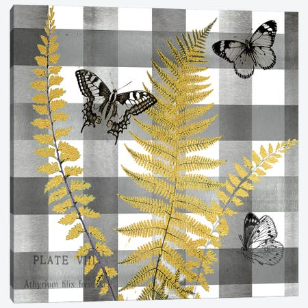 Buffalo Check Ferns and Butterflies Neutral I Canvas Print #TSS133} by Tre Sorelle Studios Canvas Print