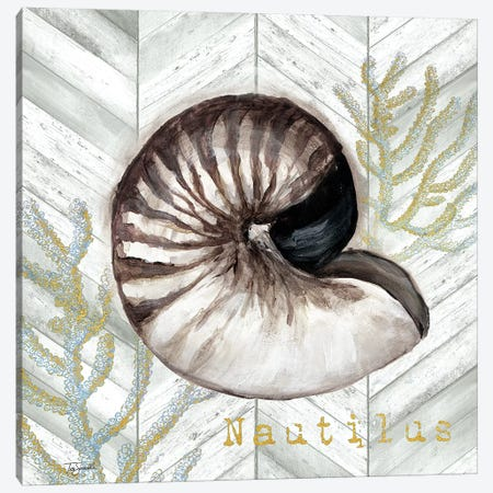 Gray Gold Chevron Nautilus Shell Canvas Print #TSS144} by Tre Sorelle Studios Art Print