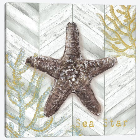 Gray Gold Chevron Star Fish Canvas Print #TSS148} by Tre Sorelle Studios Canvas Artwork