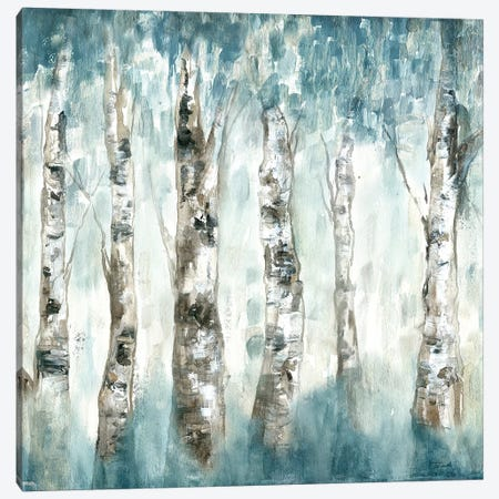 Winter Aspen Fog Canvas Print #TSS158} by Tre Sorelle Studios Canvas Print