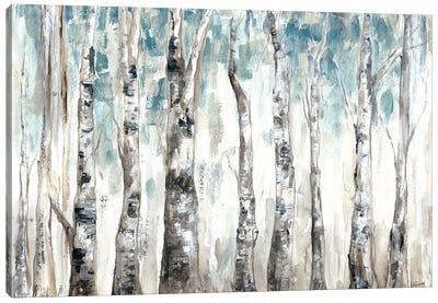 Winter Aspen Trunks Blue Canvas Art Print