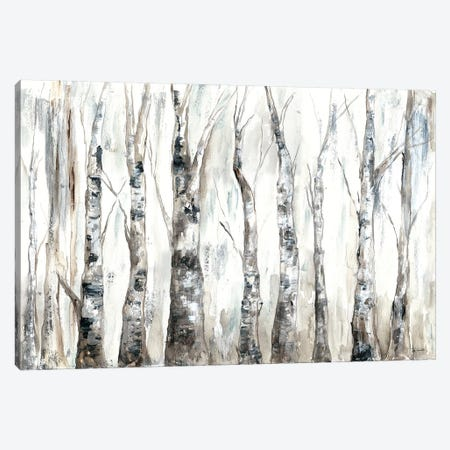 Winter Aspen Trunks Neutral Canvas Print #TSS160} by Tre Sorelle Studios Canvas Artwork
