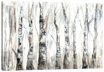 Winter Aspen Trunks Neutral Canvas Art Print
