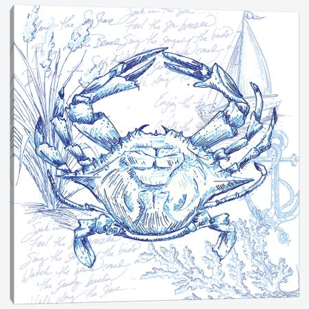 Coastal Sketchbook Crab Canvas Print #TSS163} by Tre Sorelle Studios Canvas Artwork