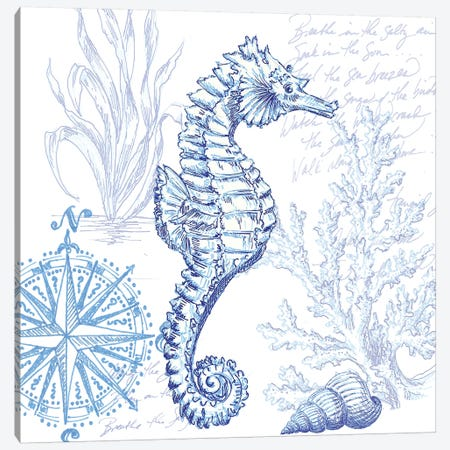 Coastal Sketchbook Sea Horse Canvas Print #TSS165} by Tre Sorelle Studios Canvas Print