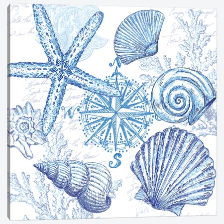 Coastal Sketchbook Shell Toss Canvas Print #TSS166} by Tre Sorelle Studios Art Print