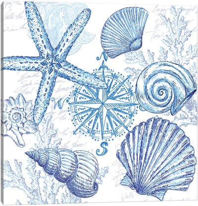 Coastal Sketchbook Shell Toss Canvas Art Print