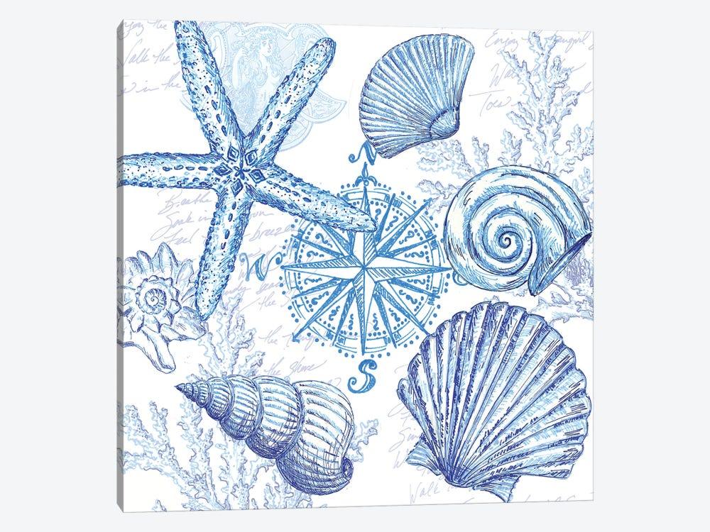Coastal Sketchbook Shell Toss by Tre Sorelle Studios 1-piece Canvas Art