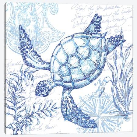 Coastal Sketchbook Turtle Canvas Print #TSS167} by Tre Sorelle Studios Canvas Print
