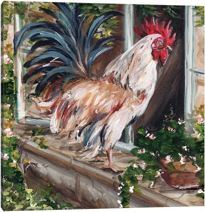 French Country Rooster Canvas Art Print