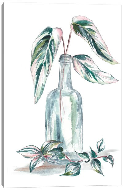 Island Tropics Frond In Bottle III Canvas Art Print