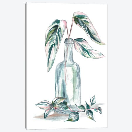 Island Tropics Frond In Bottle III Canvas Print #TSS41} by Tre Sorelle Studios Canvas Print