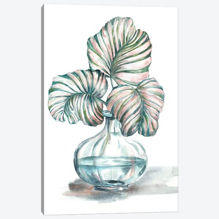 Island Tropics Frond In Bottle IV Canvas Print #TSS42} by Tre Sorelle Studios Canvas Print