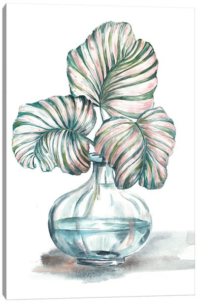 Island Tropics Frond In Bottle IV Canvas Art Print