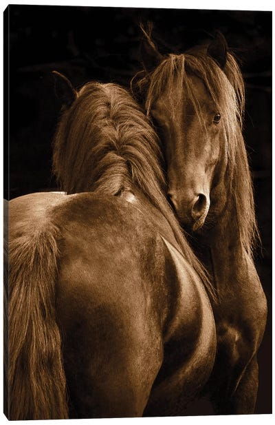 Tenderness I Canvas Art Print