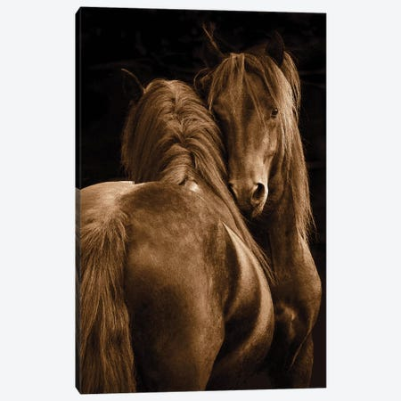 Tenderness I 3-Piece Canvas #TST12} by Tony Stromberg Canvas Art Print