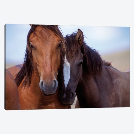 Lovers Canvas Print #TST9} by Tony Stromberg Canvas Art Print