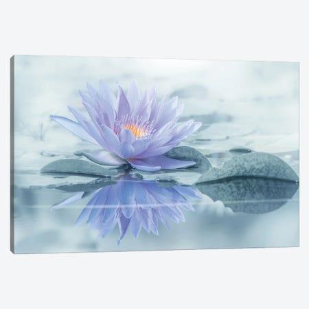 Reflection Canvas Print #TSU10} by Takashi Suzuki Canvas Artwork