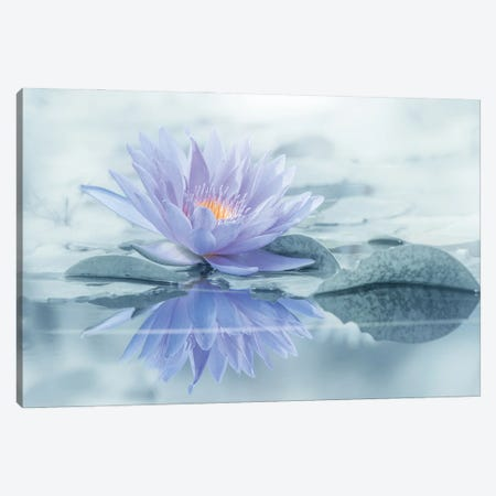 Reflection Canvas Print #TSU10} by Takashi Suzuki Canvas Artwork
