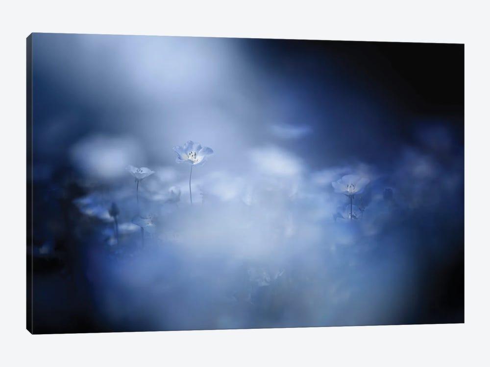 Gentle Light by Takashi Suzuki 1-piece Art Print