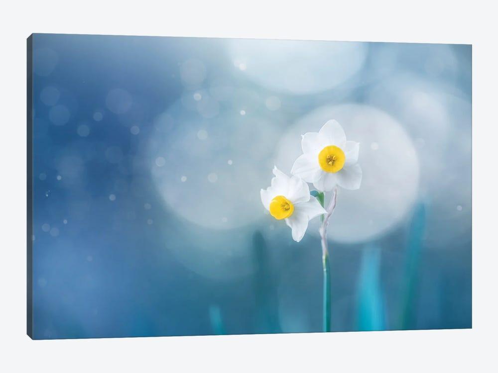 Spirit Of Moment by Takashi Suzuki 1-piece Canvas Print