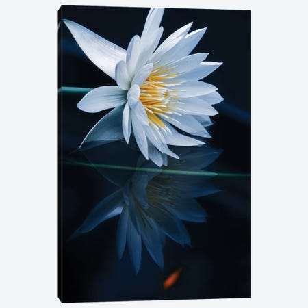 Reflecting World Canvas Print #TSU1} by Takashi Suzuki Canvas Art