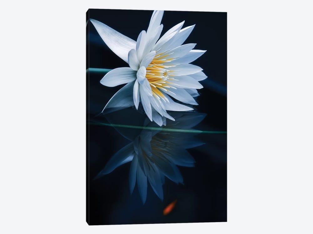 Reflecting World by Takashi Suzuki 1-piece Canvas Art