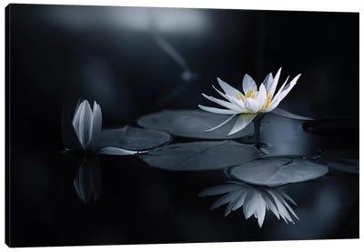 Reflection Canvas Art Print