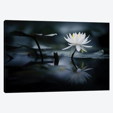 Reflection Canvas Print #TSU6} by Takashi Suzuki Art Print
