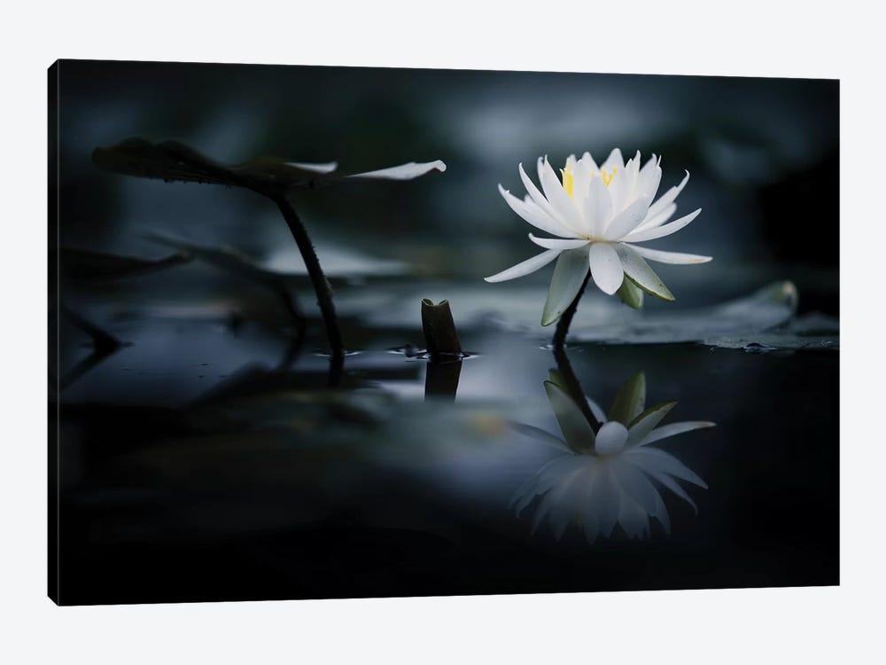 Reflection by Takashi Suzuki 1-piece Canvas Print