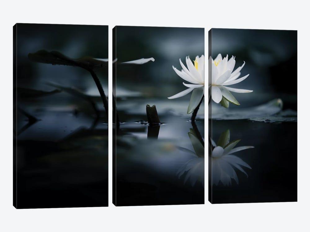 Reflection by Takashi Suzuki 3-piece Canvas Art Print
