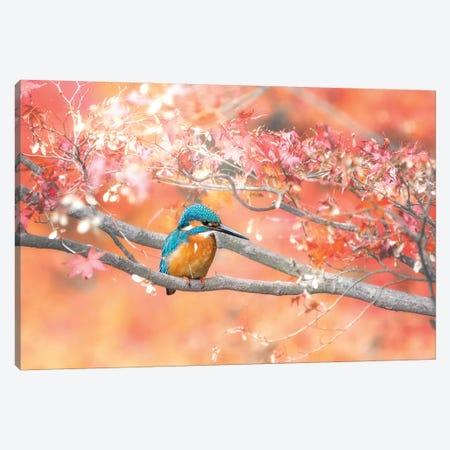 Under The Autumn Leaves Canvas Print #TSU7} by Takashi Suzuki Canvas Print