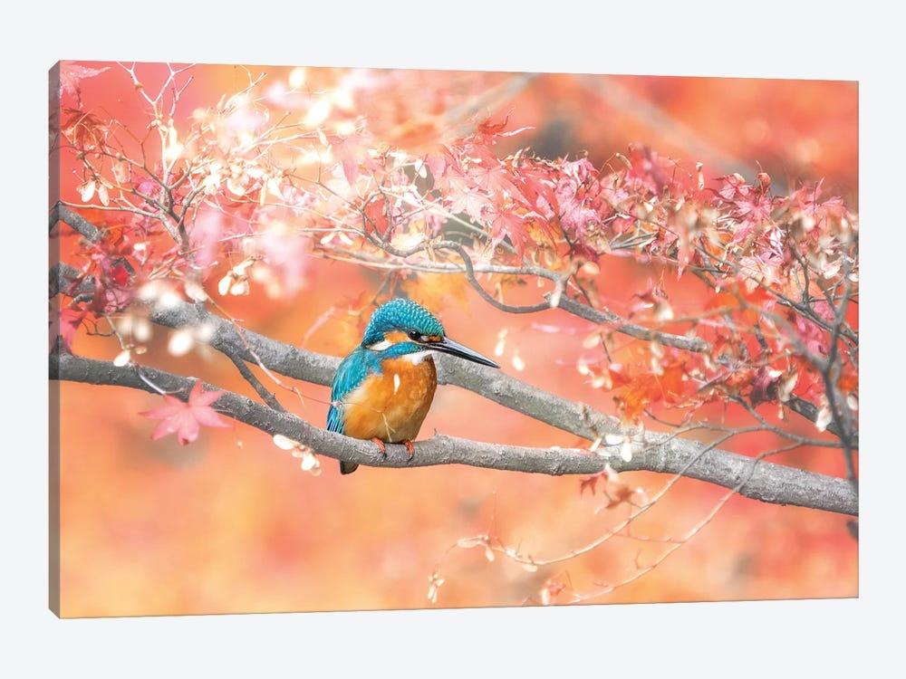 Under The Autumn Leaves by Takashi Suzuki 1-piece Canvas Wall Art