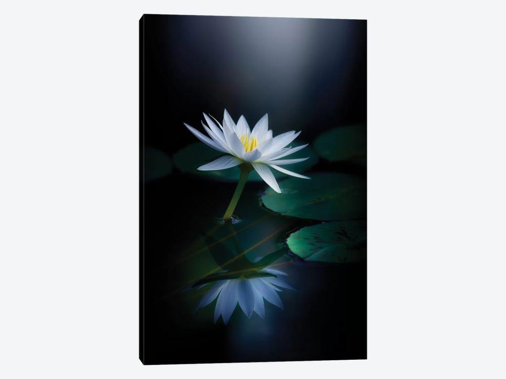 Reflection by Takashi Suzuki 1-piece Art Print